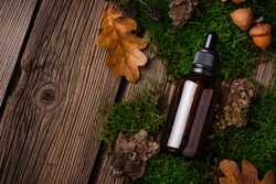 Natural organic cosmetic concept. Glass bottle in forest with moss, fern and oak leaves