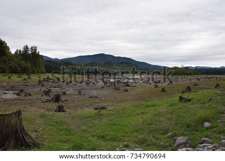 Natural Pasture with lot of cut trees, picture with a message to Protect or conserve the environment #734790694