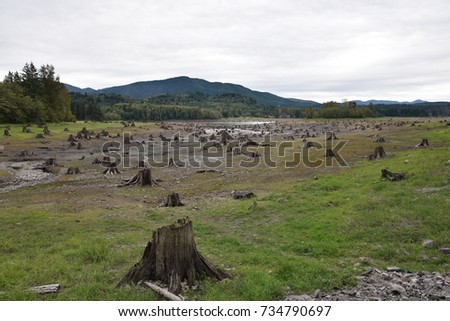Natural Pasture with lot of cut trees, picture with a message to Protect or conserve the environment #734790697