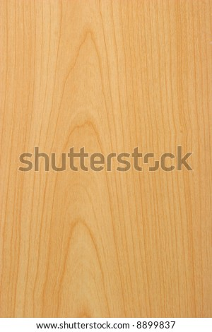 Natural Pine Wood Texture