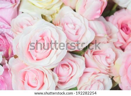 Natural pink roses background