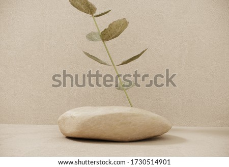 Natural premium podium made of paper on pastel background with plant branches,leaves,pebbles and stones.Mock up for the exhibitions,presentation of products, therapy, relaxation and health -3d render.