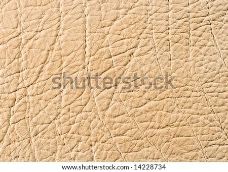 Natural qualitative beige leather texture. Close up.