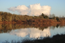 Natural reflections on the still waters of the Fern Ridge Reservoir in Oregon.