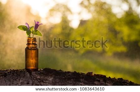 Natural remedies, aromatherapy - bottle Stockfoto ©