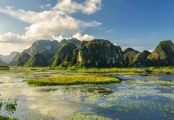Natural Reserve of Van Long wetlands