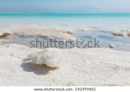 Natural salt crystals at the Dead Sea - the lowest point on earth #542499865