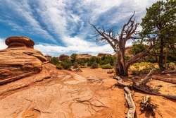 natural scenarios inside the Arches National Park, Utah, USA