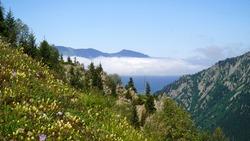 Natural scenery of beautiful mountains near Blacksea Coast, Rize, Turkey.