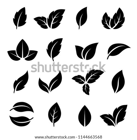 natural set of abstract black leaf icons on white background