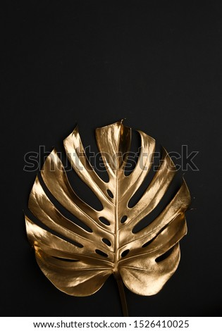 Natural single shiny monstera leaf spray painted with golden metallic paint on dark deep black background. Trendy creative modern summer fashion concept.