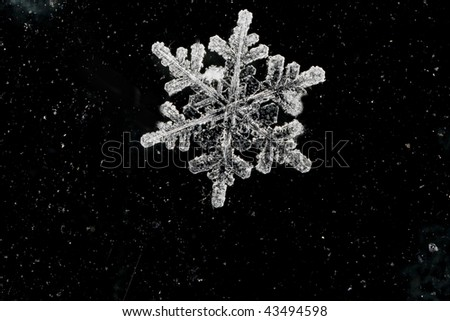 natural snow flake on abstract background