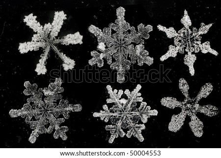natural snow flakes on abstract background