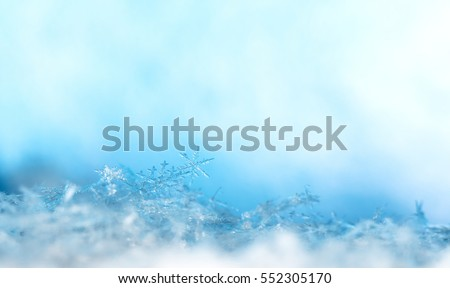 natural snowflakes on snow, photo real snowflakes during a snowfall, under natural conditions at low temperature #552305170