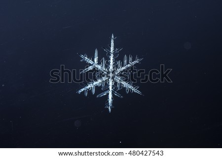 natural snowflakes, photo real snowflakes during a snowfall, under natural conditions at low temperature #480427543