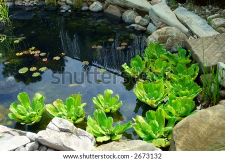 Natural stone pond as landscaping design element