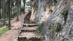 Natural stone stairs Hiking walking path up steps pathway in the forest outdoor