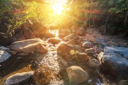 Natural stones river in tropical forest with rays of sunrise
