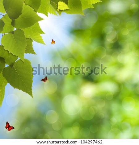 Natural summer and spring backgrounds with beauty bokeh