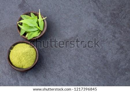 Natural sweetener in powder from stevia plant - Stevia rebaudiana. Sweetener
