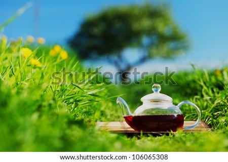 Natural tea on green grass