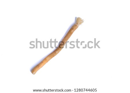 Natural toothbrush Miswak (Kayu Sugi) on white background with selective focus. It is a teeth cleaning twig made from the Salvadora persica tree and also know as miswaak, siwak, Sugi or sewak. #1280744605
