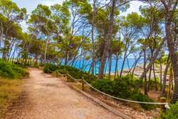 Natural walking path in the forest of Parc natural de Mondragó Cala Mondrago Samarador Mallorca.