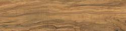 Natural wood texture . High definition.Digital ceramic.Olive wood.