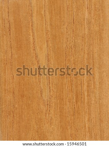 natural wood veneer photographed for its texture
