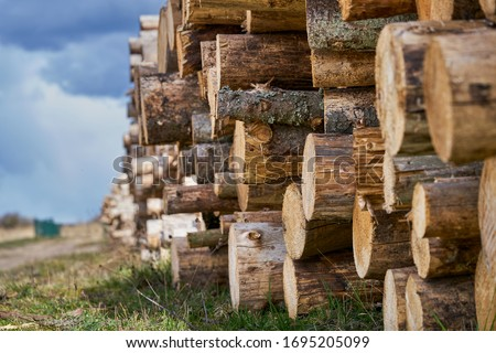Natural wooden background - closeup of chopped firewood. Firewood stacked and prepared for winter Pile of wood logs. Foto stock ©