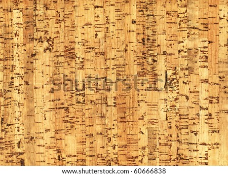 Natural wooden pith a texture a beige background