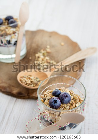 Natural yogurt with fresh blueberries and home made muesli cereals , selective focus