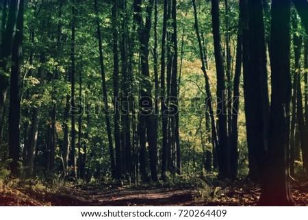 nature #720264409