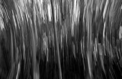 Nature abstract , Shapes, abstract