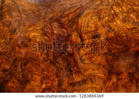 Nature afzelia burl wood striped for Picture prints interior decoration car, Exotic wooden beautiful pattern for crafts or abstract art texture background #1283884369