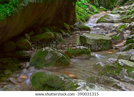 Nature. Amazing water flow in deep forest landscape.  #390031315