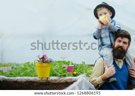 nature and beauty. nature and beauty of growing flower. nature beauty. beauty of nature with family in greenhouse #1268806195