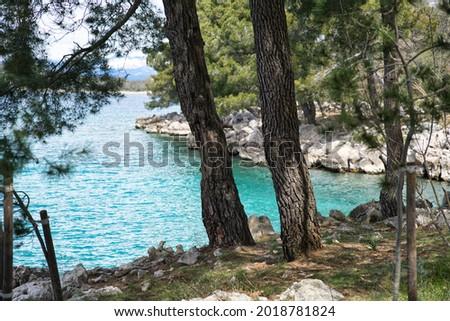 Nature at the Coastline on KRK island, Cr Photo stock ©