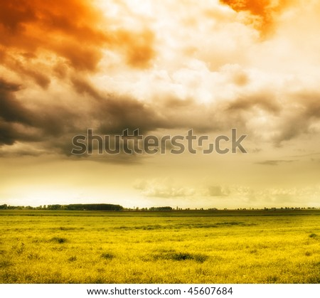Nature background - colorful sky and grass country field