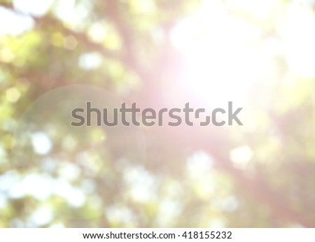Nature background concept: Nature tree blurred Bokeh background.