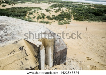 Nature background featuring remains of Atlantic wall bunkers with sea dunes and blue sky in summer day near the Hague in the Netherlands.