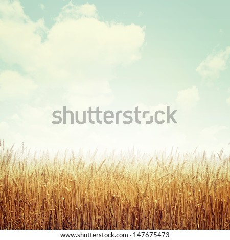 Nature Background In Vintage Style