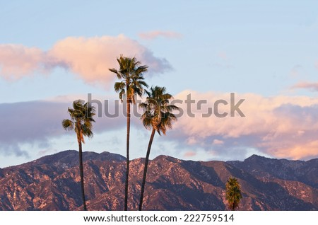 Nature background. Taken from Pasadena (California) with the San Gabriel Mountains in the background.