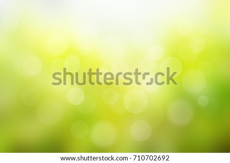 Nature blur greenery bokeh leaf wallpaper. spring and autumn park background; Soft focus light on view leaves flare rays abstract pastel tree foliage forest landscape.