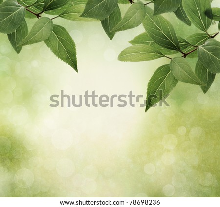 Nature border with leaves, vintage style