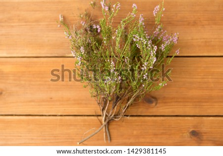 nature, botany and plants concept - heather bush on wooden table #1429381145