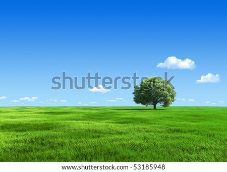 Nature collection - Tree on meadow template