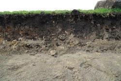 nature cross section soil underground with green grass, cutaway earth ground terrain surface
