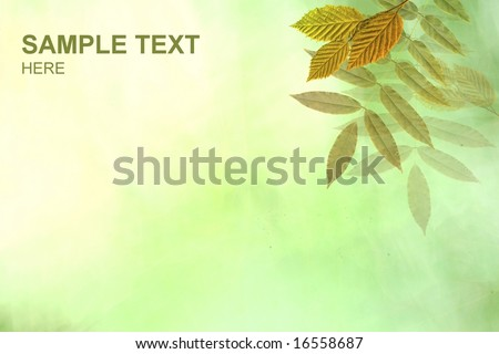 Nature floral design in green fresh colors with beautiful leaves on digital green abstract background and pleace for your text or image - stock photo