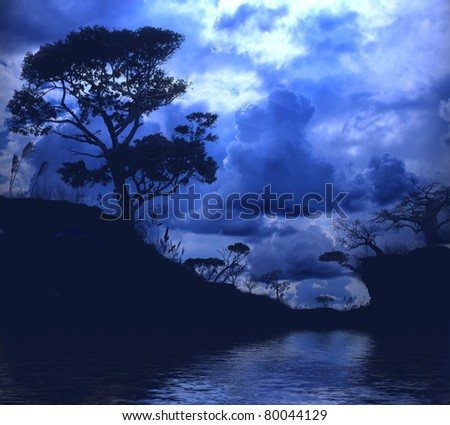 nature, forest, lake, in the evening